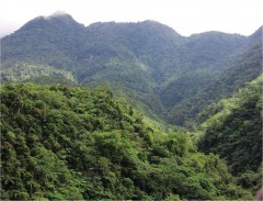 North Negros Natural Park