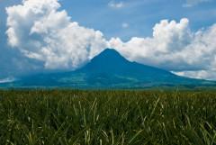 Mt. Matutum Protected Landscape