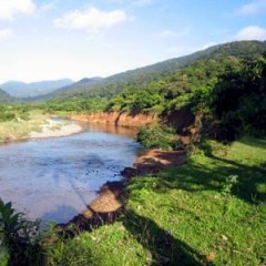 The Watershed Perspective in Forest Resource Conservation